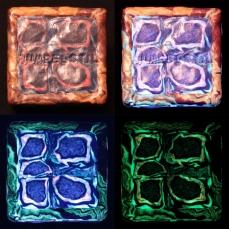 Quadratische Box -Hinten