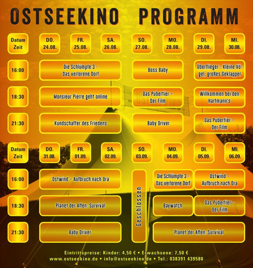 Falti-OKino#03-back-w