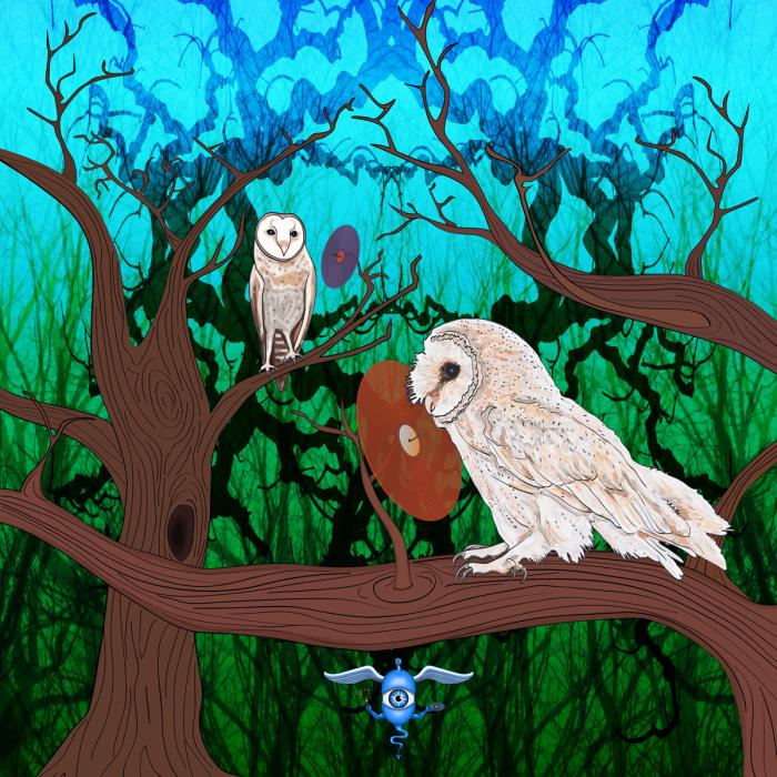 Owls-on-vinyl